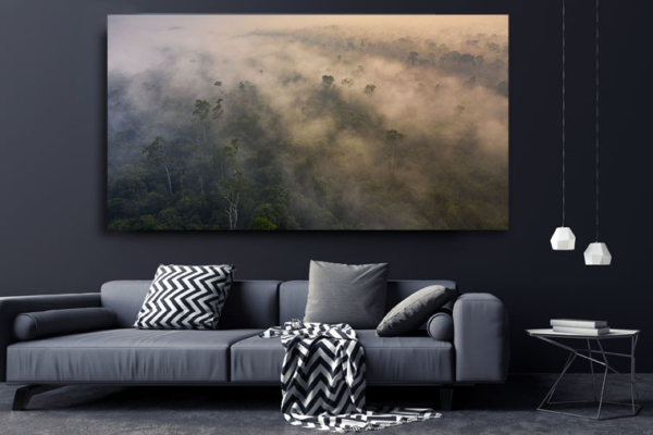 Panoramic view of forest fires in Borneo